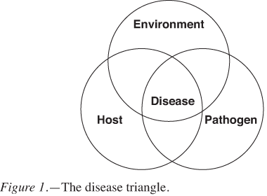 Figure1-DiseaseTriangle